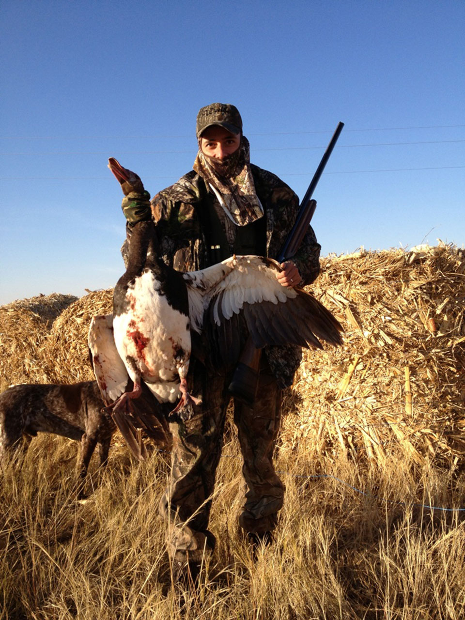 Spur-Winged-Goose-Hunting-Safaris-South-Africa.jpg