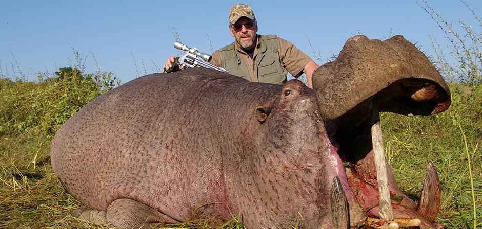 Hippo Hunting Safaris in Africa | Hunt Hippopotamus in Africa